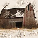 A Touch of Winter by lorilee
