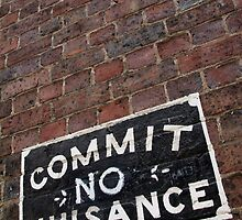 Commit No Nuisance by Camilla