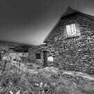 Irish Famine Cottage by Jill Fisher