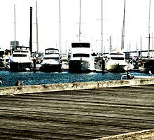 Williamstown Marina by Camilla