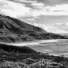 Pacific Coast Highway 1 in Black and White by GreenSaint