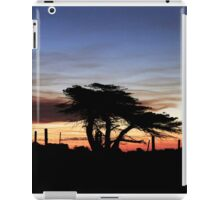 Evening Stillness iPad Case/Skin