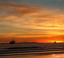 Huntington Beach Sunset by Carol Rudd