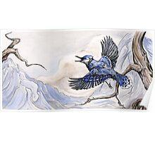 Little Blue Jay Poster
