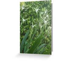 Gently swaying in the wind Greeting Card