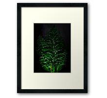 Lighting plant Framed Print