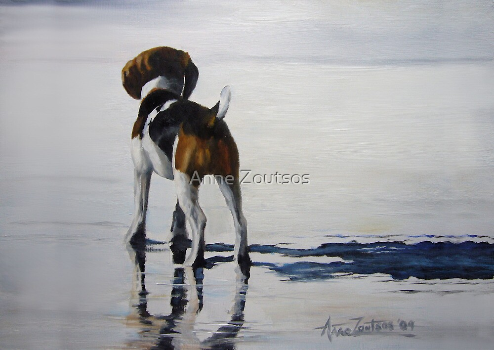 Beagle Reflections by Anne Zoutsos