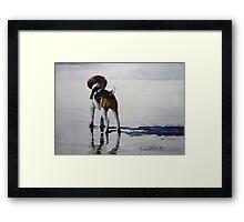 Beagle Reflections Framed Print