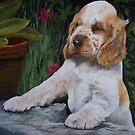 Cocker Spaniel Puppy by Anne Zoutsos