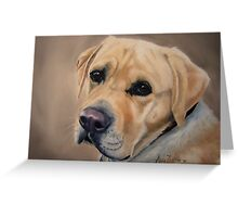 Labrador Expression Greeting Card