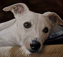Whippet At Rest by Anne Zoutsos