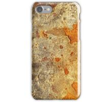 Rust iPhone Case/Skin