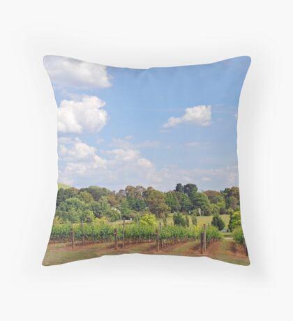 Southern Higlands Winery Panorama Throw Pillow