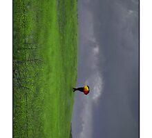 RAIN CASE  by karmadesigner