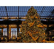 Christmas at Longwood Photographic Print