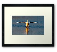 The landing 2 Framed Print