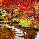 Japanese Garden by AnnDixon