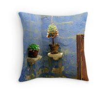 Pot Plants, Arequipa, Peru Throw Pillow