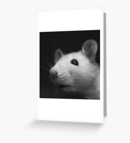 Stuart Smells Something Greeting Card