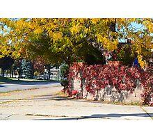 Fall on the Street Corner Photographic Print