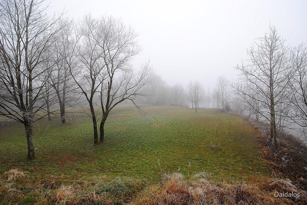 Shot in the Fog 2 by Daidalos