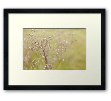 Almost a dream Framed Print