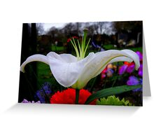 Side View Greeting Card