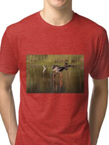 Ponds At Sunset Tri-blend T-Shirt