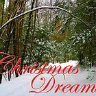 Christmas Dreams by Gene Walls