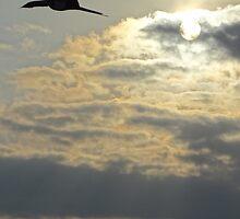 Sailing through the sky - Navegando en el cielo by Bernhard Matejka