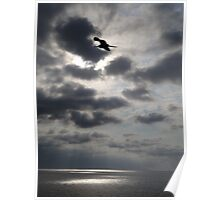 Touching the sky - Tocando al cielo Poster