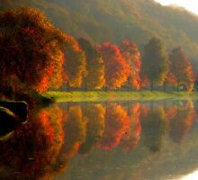 Reflets d'automne by Jean-Luc Rollier