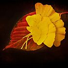 Group Leaf by DmitriyM