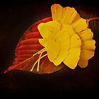 Group Leaf by DmitriyM