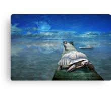 The Tortoise & the Hare take a break Canvas Print