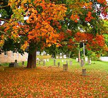 Church Yard, Picton, Ontario by pwilliamson