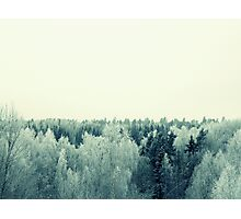Frost All Over Photographic Print