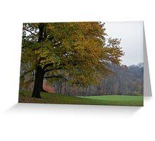 autumns crisp embrace Greeting Card