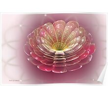 Pearlescent Chrysanthemum Poster