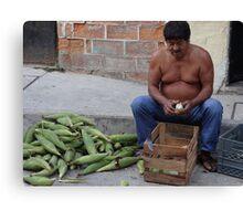 Corn - the holy plant for the Mexican people - Maiz - la planta sacrada para los Mexicanos Canvas Print