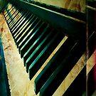 piano case by Sonia de Macedo-Stewart