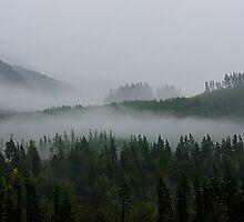 Mountain Fog by richchop