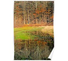 Foliage and water Poster