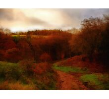 Quantocks 1 Photographic Print