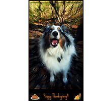 Happy Thanksgiving From Sammy! Photographic Print