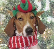 Dog Elf Christmas Card by Carol Santora