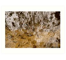 Untitled Water Reflections No.43 Art Print