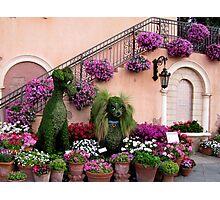 Epcot's Flower & Garden Festival Photographic Print
