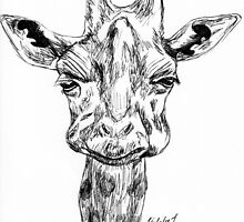 Giraffe Ink drawing by ArtLuver