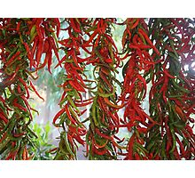 Strung and Hanging Red and Green Chili Peppers Drying Photographic Print